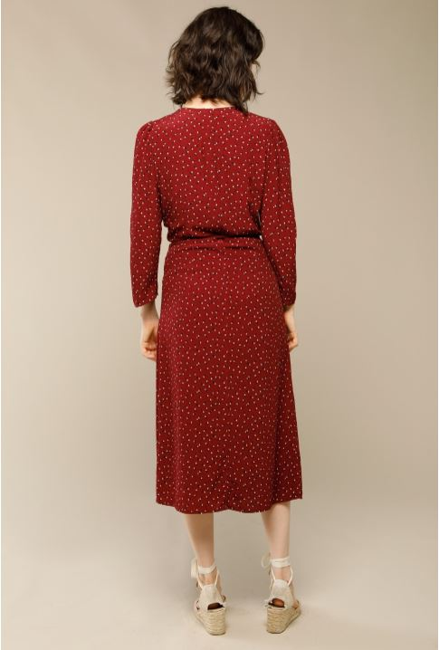 Rouje Gabin dress with dots print back view