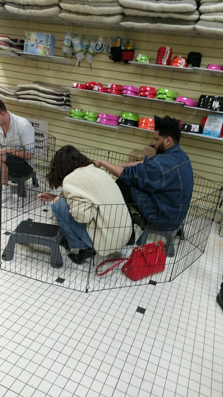 Selena Gomez in a pet store photo ss_nothing