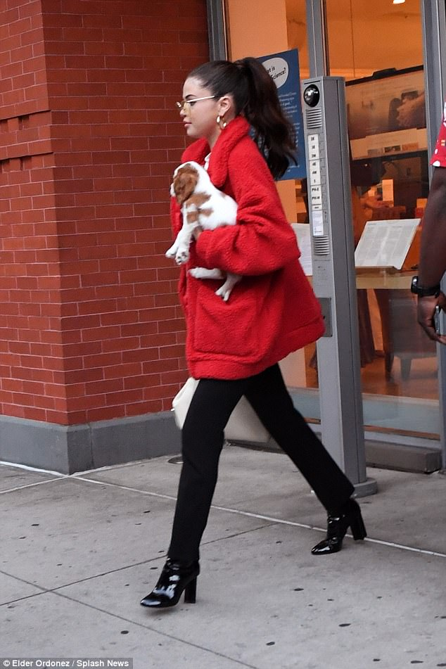 Selena Gomez red fleece coat black boots gold hoop earrings puppy September 2017 photo Elder Ordonez Spalsh News Selena Gomez street style
