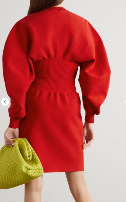 Bottega Veneta Wool Blend Mini Dress back view
